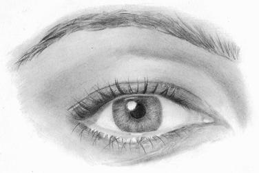 draw pencil portrait like a master art and entertainment